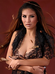 The Black Alley Model  Diana Q